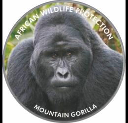 A klímaváltozás és az esztelen vadászat áldozata a gorilla