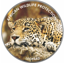 A klímaváltozás és az esztelen vadászat áldozata a leopárd