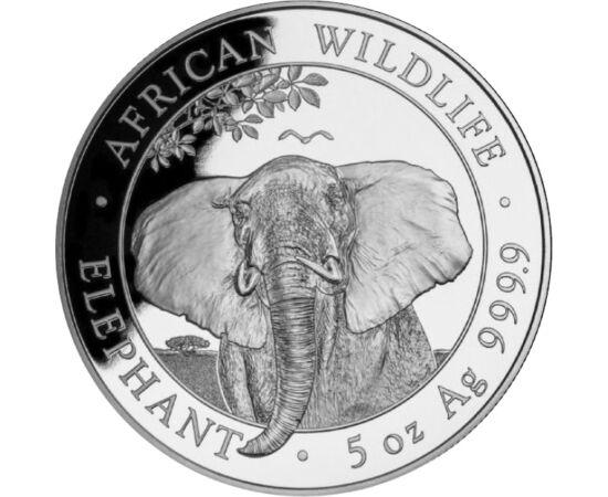 500 shilling,Elefánt,5 unc,Ag,2021 Szomália
