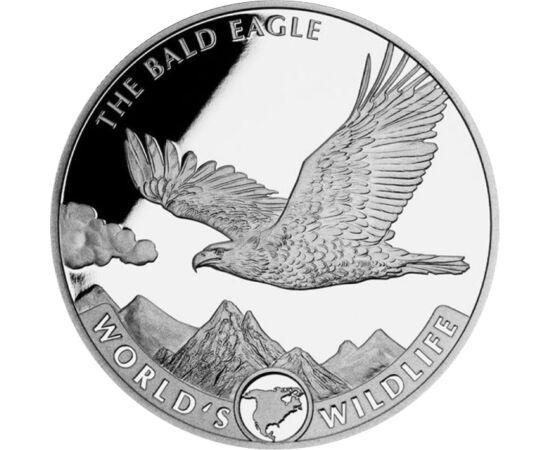 20 frank, Fehérfejű rétisas, Észak-Amerika, Ag 9999, 31,1 g, Kongó, 2021