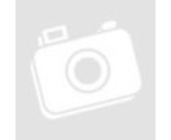 VISTA 2 eurós érmealbumlap - 10 érmének
