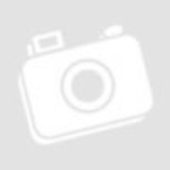 Különlegesség! 0 euró (!) névértékű szuvenír pénz 2018-as Mexikó focijának motívumával.